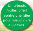 macaron_arbuste