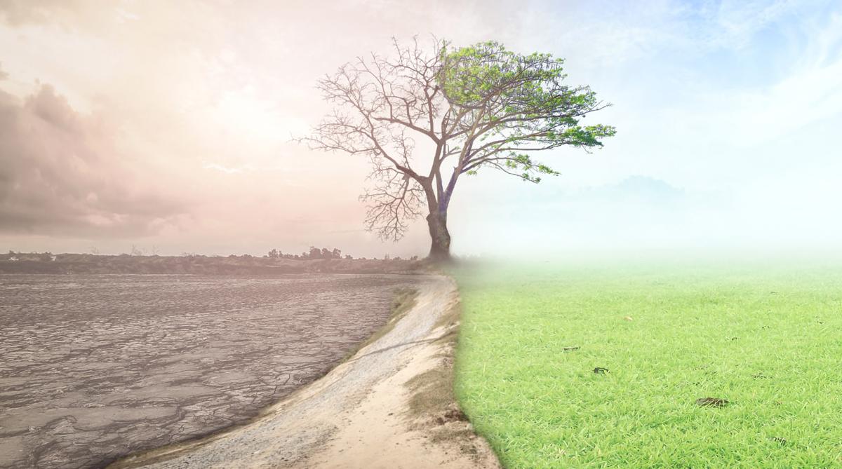 Déclaration d'urgence climatique à Gesves